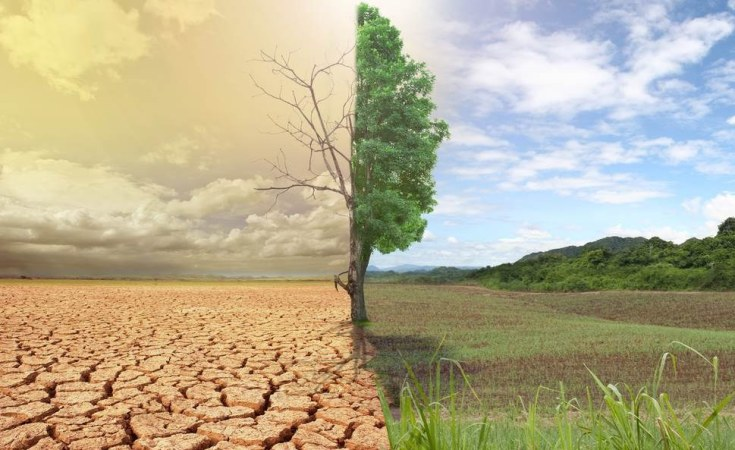 Samia pushes for climate resilience