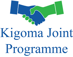 Norway pledges more funds for  Kigoma regional community