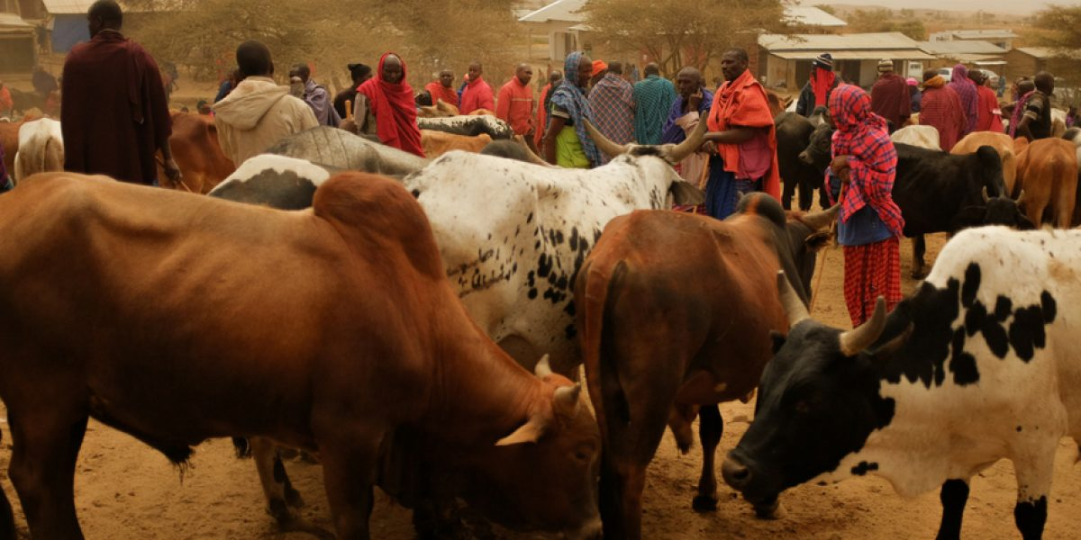 Land use plan vital to avert  farmers, pastoralists conflicts