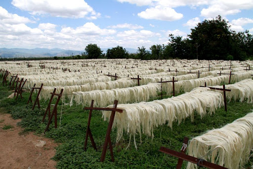 Sisal board eyes 120,000 tonnes output by 2025