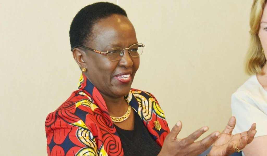 Tz committed to integration, Mulamula assures