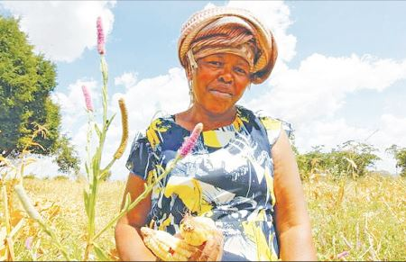 How peasants cope under large-scale land investments
