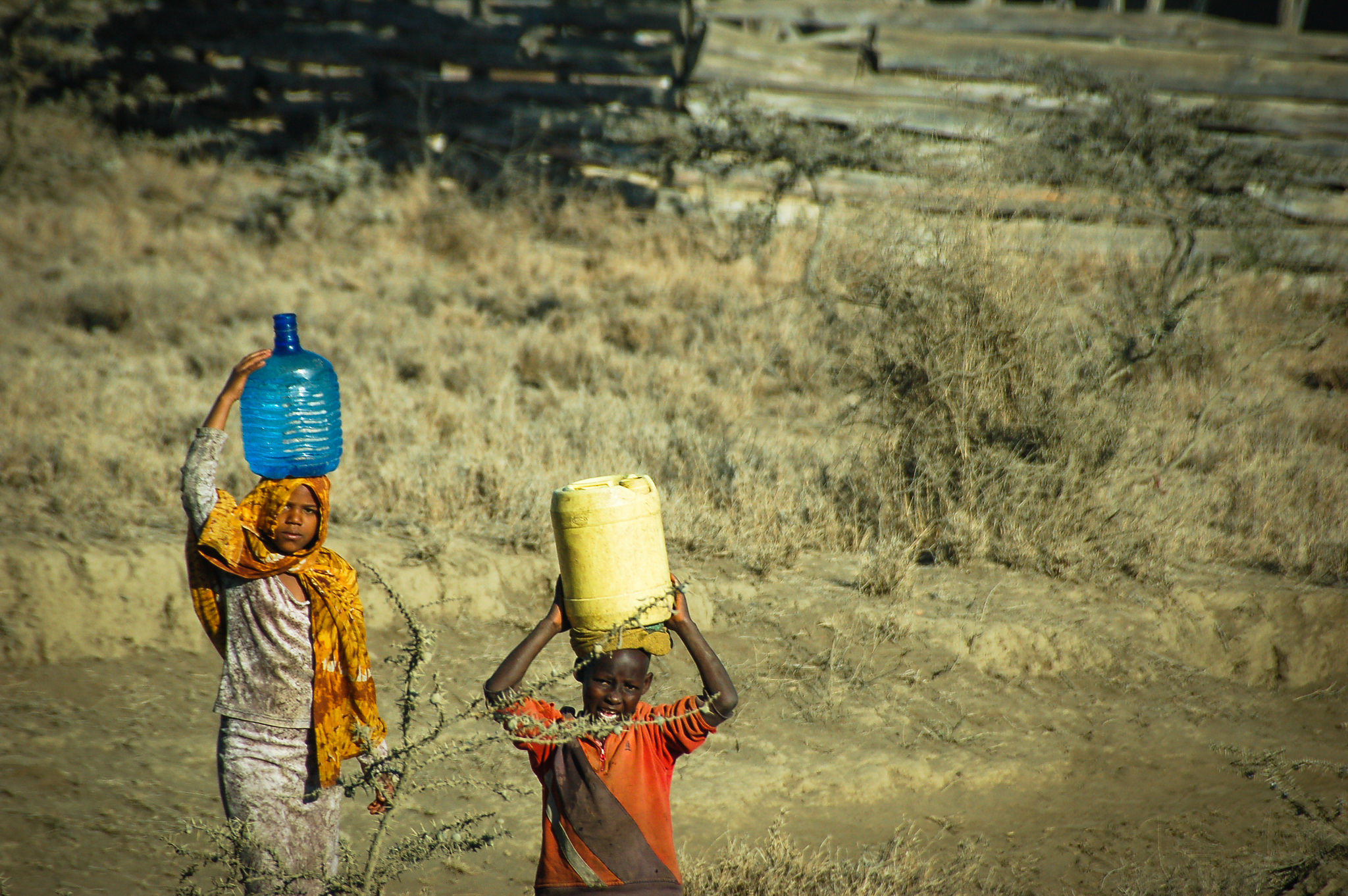 Tanzania's path to poverty reduction, pro-poor growth