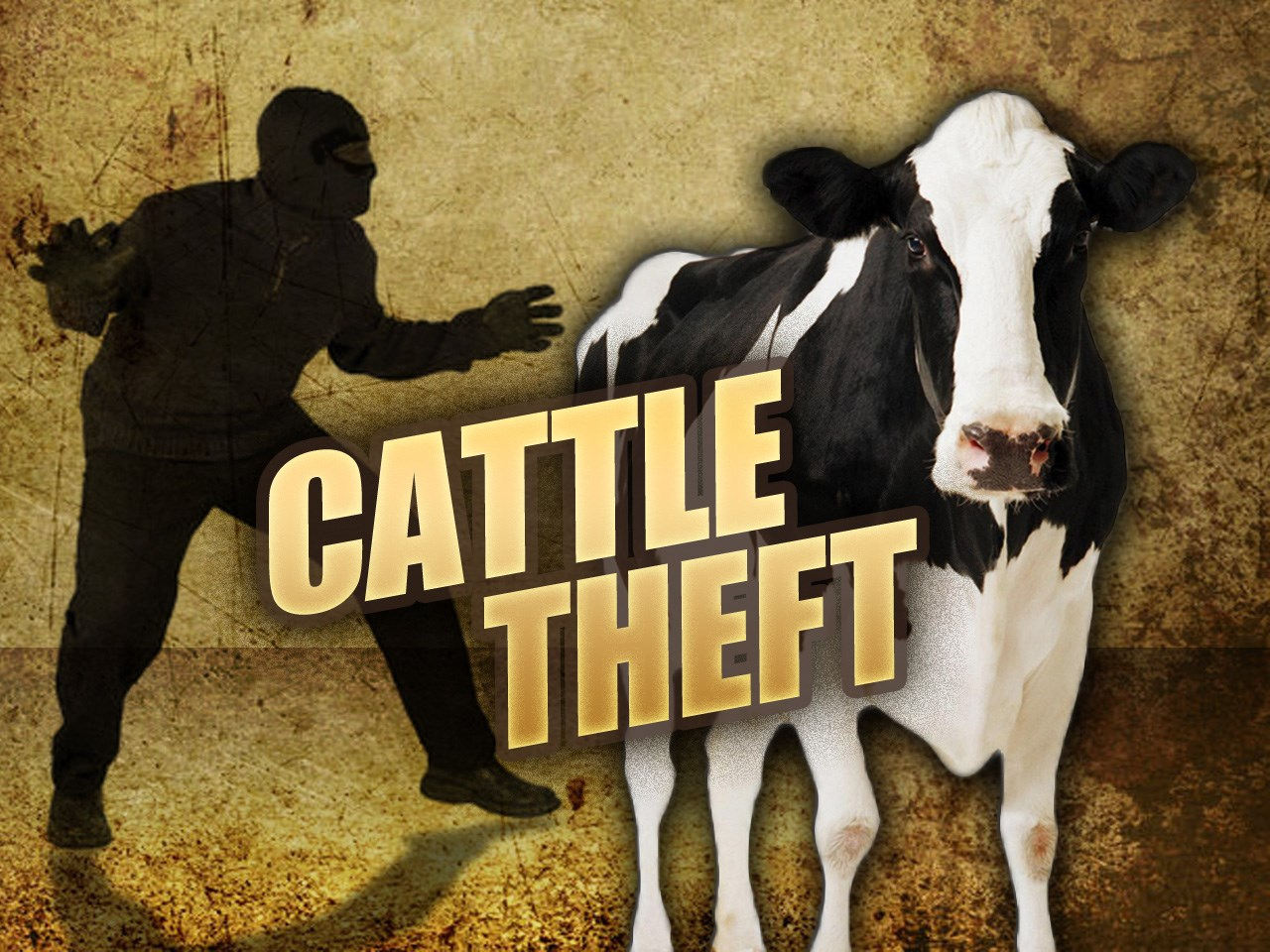 Kagera launches operation to crack down cattle rustlers