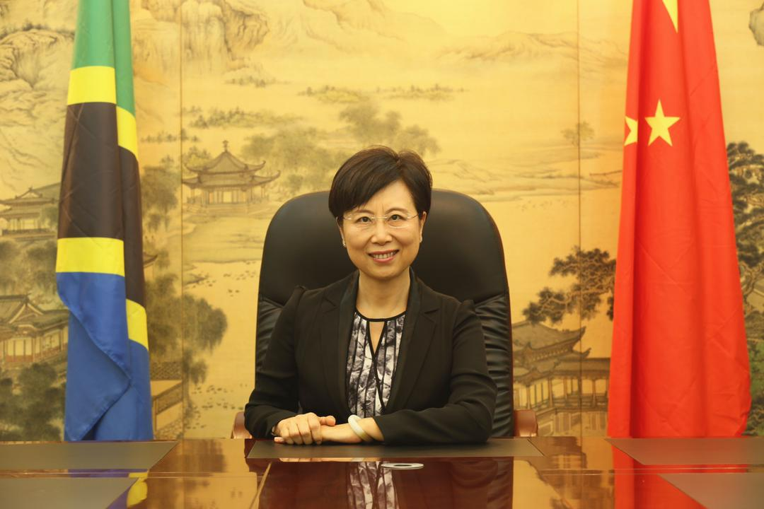 China and Africa jointly launch the initiative on  partnership for Africa's development