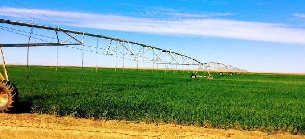 Agriculture  investment  opportunities  on spotlight